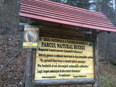 The Natural Park Bucegi, Valea Cerbului