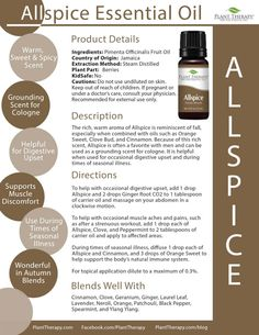 Our 4 Ways to use Allspice Essential Oil - Plant Therapy Blog Plant Therapy, Natural Oils, Aromatherapy, Lotion, Essential Oils, Lotions, Essential Oil Blends, Essential Oil Uses