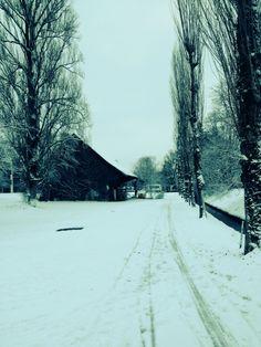 Zurich, Seebach