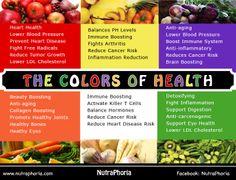 Nutrition yale course catalog