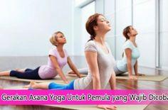 Tipe Gerakan Asana Yoga Untuk Pemula yang Wajib Dicoba #asanayoga #yoga #tipsyoga
