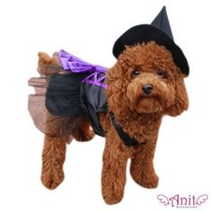 Witch Dog Costume - Two piece witch dog dress costume with purple corset back matching pointed witch hat. #dogproducts #dogsupplies #dogapparel #dogcostume http://BeesCorner.com/witch-dog-costume/