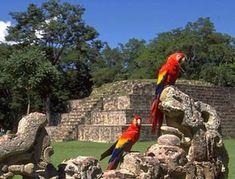 Fun Interesting Facts About Honduran Culture