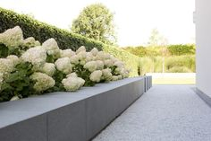wide grey stone raised bed with white hydrangea || Filip Van Damme