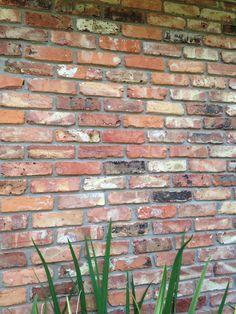 Old Chicago Brick Brick Fireplace, Fireplace Design, Brick Walls, Brick Wall Decor, Types Of Bricks, Cedar Homes, Brick Colors, Old Bricks, Exterior Remodel