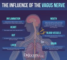 Improving Vagal Tone For Better Mental and Emotional Health Brain Health, Gut Health, Health And Wellness, Mental And Emotional Health, Mental Health Issues, Vagus Nerve, Chronic Stress, Natural Health Remedies, Exercises