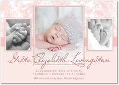 Girl Photo Birth Announcements - Traditional Toile: Tea Rose by Tiny Prints