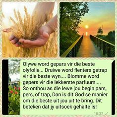 Evening Greetings, Good Morning Greetings, Thats So Me, Afrikaanse Quotes, Goeie More, Special Quotes, My Land, Worship, Bring It On