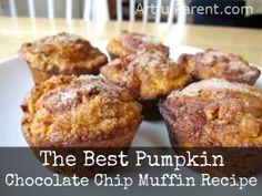 The Best Pumpkin Chocolate Chip Muffin Recipe