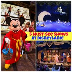 5 Magical Shows You Can NOT Miss While at Disneyland!