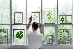 Look at the hinged pane in this wall of windows! Love the idea! DIY Gift Idea // Minimalist Framed Floating Leaves