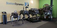 Spot, four-legged robot, Boston Dynamics, military robot, future warfare, futuristic robot