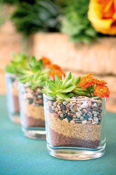 Mini desert garden favors made with layered sand + pebbles and topped with succulents. By Mood Events & Production.