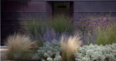 soft, feminine planting up against handsome, masculine building; design by Giardino Segreto