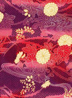 Japanese Import - Chrysanthemum Glow - Taffy Pink