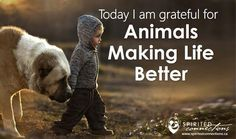 Today I am #grateful for how #animals make life #better  Always!! #inspirationalquotes #inspiration #feelgood #gratitude #thankful #thanksgod #pets #animal #lifelessons #live #alive #amazing #smile #instagood #instadaily