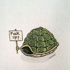 Illustration by Sozzij Turtle Quotes, Tortoise Drawing, Shell Drawing, Turtle Time, Carapace, Tortoise Turtle, Cute Turtles, Tier Fotos, Tortoises