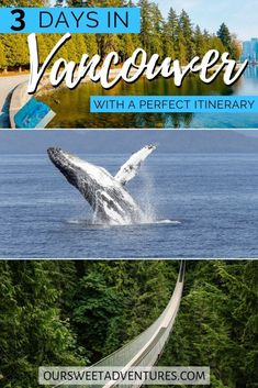 Vancouver in 3 Days - a Perfect Vancouver Itinerary - Whether you are traveling in Vancouver in the summer, fall, spring, or winter – I have the ultima - Visit Vancouver, Vancouver Travel, Vancouver Style, Toronto Canada, Alberta Canada, Quebec, Ottawa, Winter Forest, Canadian Travel
