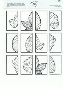 Autumn leaves - cut and paste. Autumn Crafts, Autumn Art, Autumn Theme, Autumn Leaves, Symmetry Activities, Autumn Activities, Fall Preschool, Preschool Activities, Art For Kids