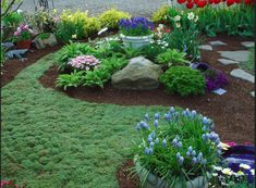 1000 Images About Garden Without Grass On Pinterest