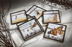 J. Devlin Coaster Set with Tray, A #Butterfly's Life, Tra 110-5