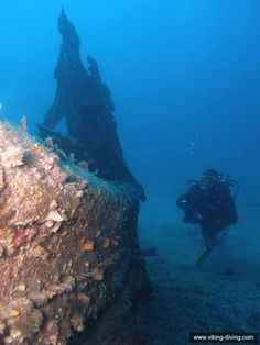 The well decorated but small English merchant boat Paulina makes for a stunning dive site near Hvar, Split, Croatia.