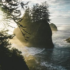 opticcultvre:    When the light hits just right     Samuel H...