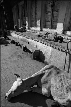 Ferdinando Scianna, Italy. Magnum Photos