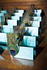 Peacock Name Cards