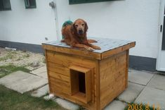 Tango-Manitoba, Canada:  several years of being tried and tested, this dog house has been proven to be the most comfortable and the safest home you can build for your beloved dog.