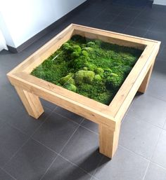 Home Decor Accessories .Home Decor Accessories Easy Woodworking Projects, Fine Woodworking, Wood Projects, House Plants Decor, Plant Decor, Terrarium Table, Moss Wall Art, Moss Art, Decoration Plante