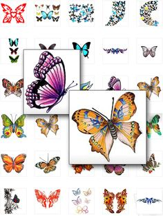 Colored Butterfly Tattoos get yours to