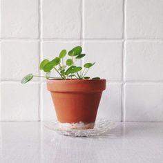 Går det att måla på kakel? | ELLE Home Kitchens, Diy And Crafts, Planter Pots, Shabby Chic, Room Decor, House Design, Interior Design, Tiles, Paint