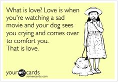 What is love?  Love is when you're watching a sad movie and your dog sees you crying and comes over to comfort you.  That is love.