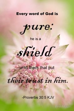 Proverbs 30:5 KJV Every word of God is pure: he is a shield unto them that put their trust in him.