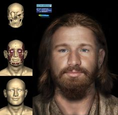 Reconstruction Of A Dublin Commoner From The Tudor Era Facial Reconstruction Of A Dublin 'Lower-Class' Commoner From The Tudor Era.Facial Reconstruction Of A Dublin 'Lower-Class' Commoner From The Tudor Era. First Ladies, Forensic Facial Reconstruction, Mystery Of History, Pre History, Tudor History, British History, Tudor Era, Human Evolution, Fiction