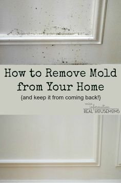 1000 Images About Mold On Pinterest Mold Allergy Mold