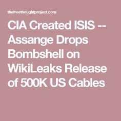 Image result for wikileaks isis cia