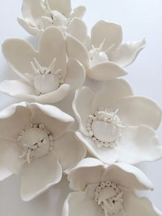 Inspired by cannonball flowers Syra Gomez unglazed white porcelain flowers