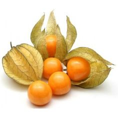 Cape gooseberry jam, also known as Chinese gooseberry or physalis made in the…