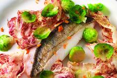 Pesce San Pietro, cavolini di Bruxelles e radicchio