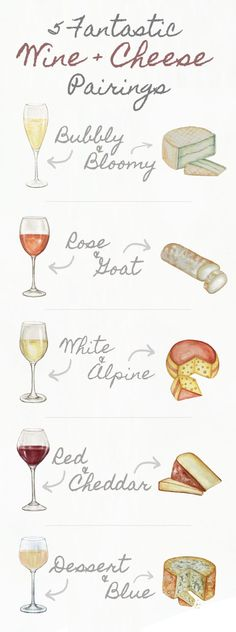 A Simple Guide for Wine and Cheese Pairings