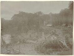 anoniem | Aanleg van de spoorweg bij Dam, Suriname, attributed to Jacob Evert Wesenhagen, 1905 - 1910 | Arbeiders vervoeren materiaal over een werkbrug, bij Dam op km 173. Aanleg van de Lawaspoorweg in Suriname in de jaren 1903-1912. Onderdeel van een groep objecten afkomstig van de familie Wesenhagen in Suriname.