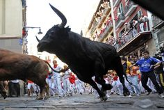 Festival of San Fermin 2010 (Day 2): Bull Running