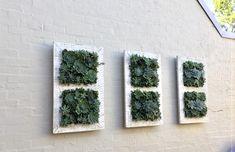Green walls make a powerful visual statement. Size 60 cm x 70 cmH