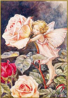 Illustration for the Rose Fairy from Flower Fairies of the Summer. The Rose fairy was first published in Flower Fairies of the Garden, Author / Illustrator Cicely Mary Barker Cicely Mary Barker, Fantasy Kunst, Fantasy Art, Fairy Dust, Fairy Tales, Fantasy Magic, Fairy Garden Plants, Fairy Gardens, Fairies Garden