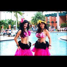 Make your Luau complete with Hula Dancers! www.echoesofhawaii.com #hula #hawaiian #miami #dance #dancer #fire #polynesian #entertainment #hire #florida