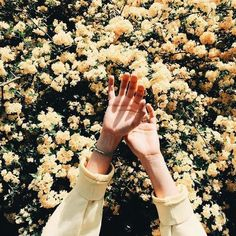 Image discovered by Katerina. Find images and videos about aesthetic, flowers and yellow on We Heart It - the app to get lost in what you love. Spring Aesthetic, Aesthetic Colors, Flower Aesthetic, Aesthetic Photo, Aesthetic Pictures, Aesthetic Yellow, Aesthetic Collage, Aesthetic Drawings, Aesthetic Grunge