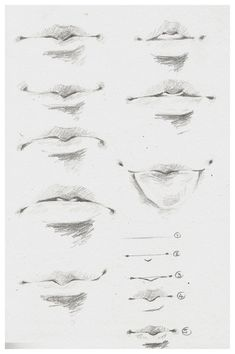 10 Amazing Nose Drawing Tutorials & Ideas - Brighter Craft - Reference for Head Drawing - Handdraw Anatomy Sketches, Anime Drawings Sketches, Anatomy Drawing, Pencil Art Drawings, Drawings Of Mouths, Fantasy Drawings, Animal Drawings, Nose Drawing, Guy Drawing