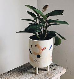 Practice Studies 'Plants Pants'